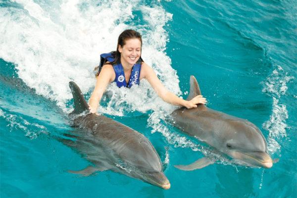los-peligros-de-nadar-con-delfines-cancun