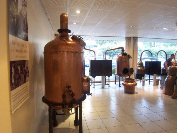grasse-capital-del-perfume-en-francia-visita