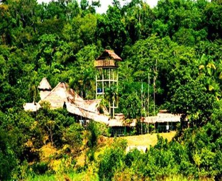 almari_reserva_natural_amazonas_colombia