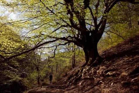 ruta brujas Navarra