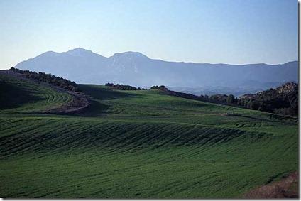 navarra paisaje