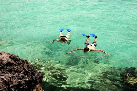 snorkel-lanzarote