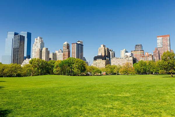 Que ver en nueva york en 7 dias central park