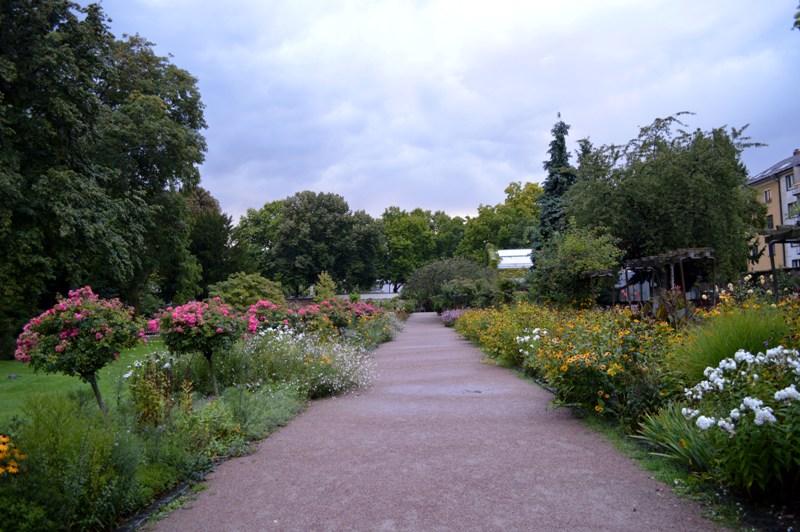 Bethmannpark frankfurt
