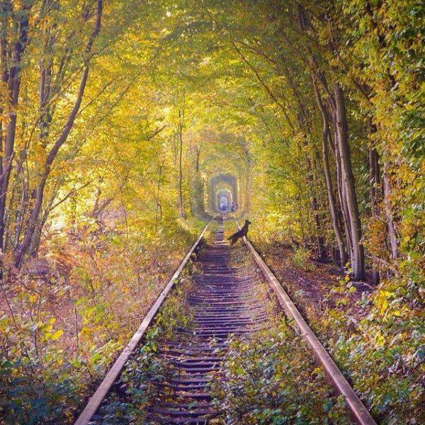 tunel_del_Amor_otoño