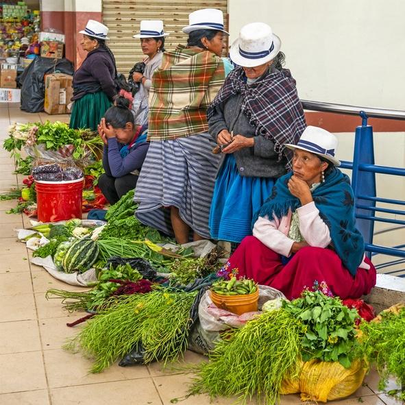 Trajes tipicos ecuador diario