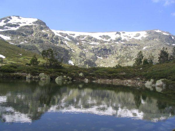 Rutas para hacer con perros en madrid parque nacional de Pelañara