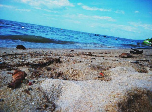 Cuando el dia mundial de las playas