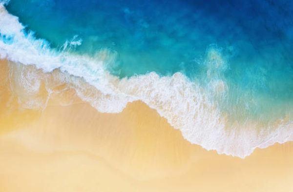 Cuando es el dia mundial de playas