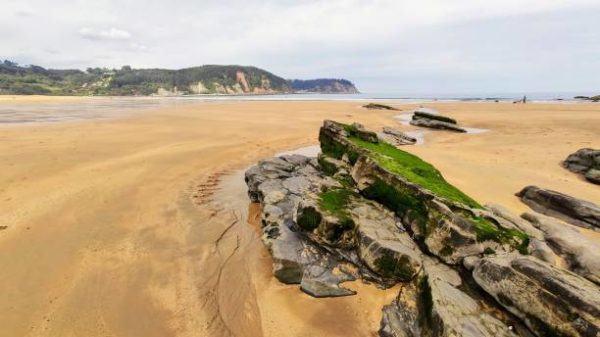 Mejores playas para practicar surf playa rodiles