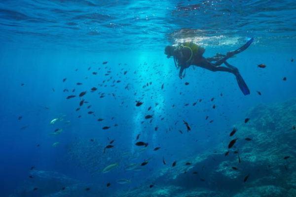 Mejores sitios de europa para bucear islas medes 1