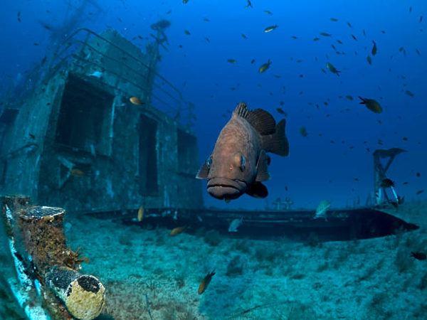 Mejores sitios de europa para bucear naufragios de malta 1