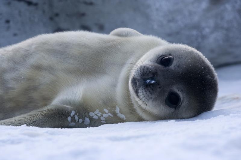 los-mejores-destinos-de-vacaciones-2014-foca