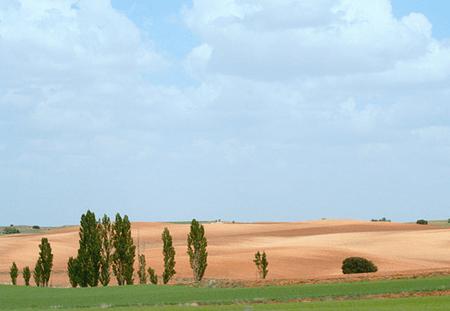 Excursiones desde Valencia