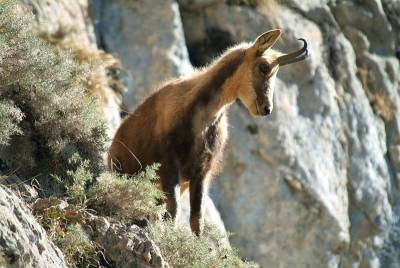 Parque de Aigüestortes, Cataluña | turismo de montaña ...