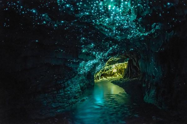27-lugares-que-habria-que-visitar-antes-de-morir-Glowworm-waitomo-nueva-zelanda