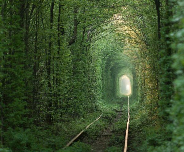 27-lugares-que-habria-que-visitar-antes-de-morir-tunel-del-amor-ucrania