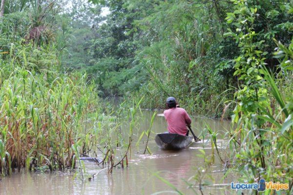 remar amazonas