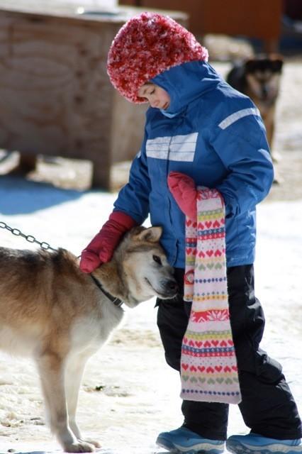 14-aventuras-de-viaje-para-las-familias-en-2014-trineo-alaska