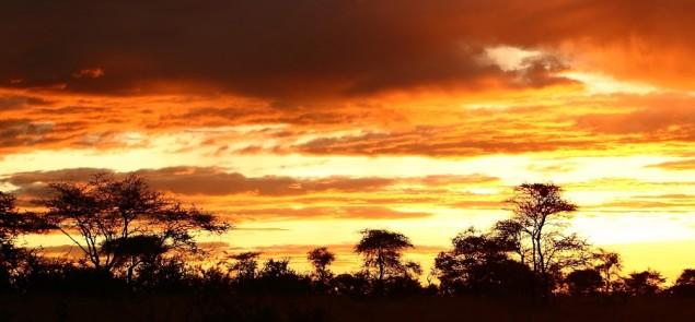 Atardecer-en-Serengeti