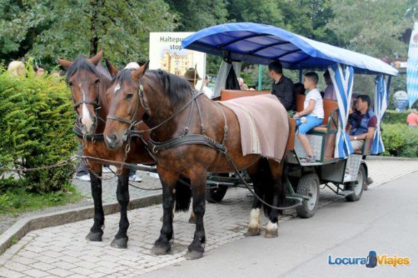 castillo_neuschwanstein_caballos