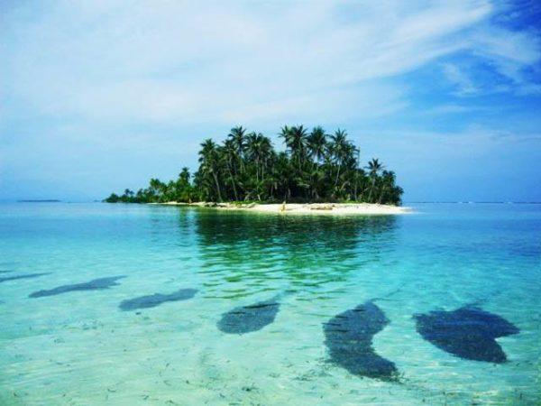 isla-aguja-san-blas