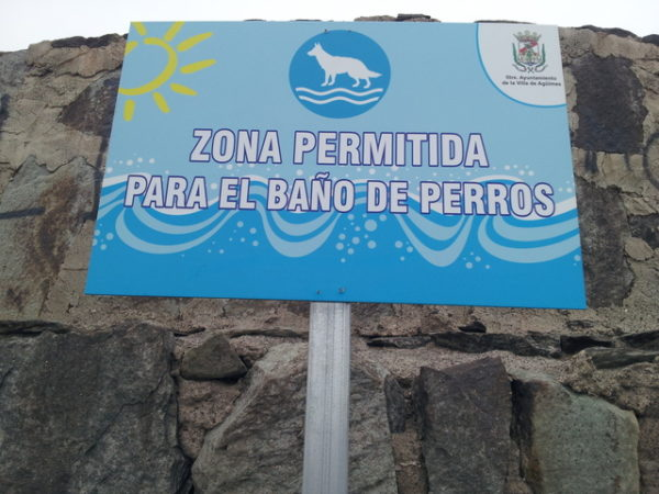 14-playas-para-ir-con-tu-perro1