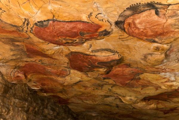 10-lugares-en-espana-que-es-obligatorio-visitar-cuevas-de-altamira