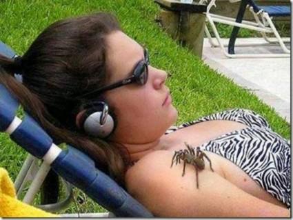 16-razones-por-las-que-no-ir-viajar-a-australia-mas-insectos