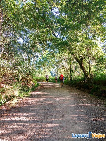 camino-santiago-fisterra-consejos