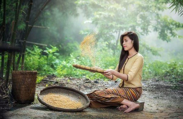 vacunas-que-necesitas-para-viajar-a-tailandia-mujer-arroz