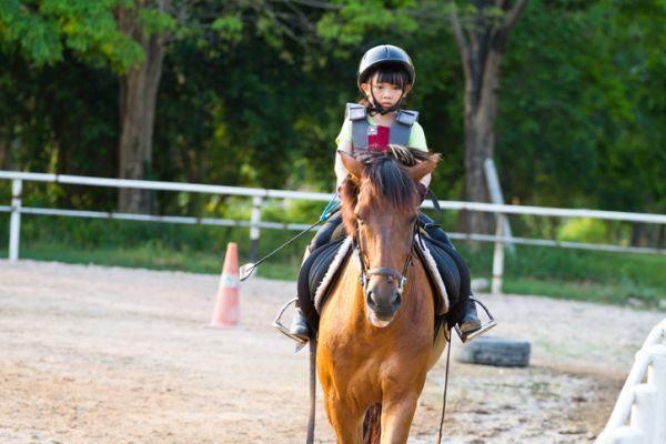 que-hacer-en-madrid-con-ninos-caballos-istock
